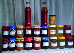 Rácz István – őstermelő, méhész és házi lekvárkészítő