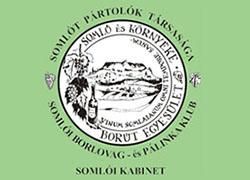 Somlói Borút
