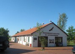 Madárkórház Alapítvány