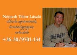 Németh Tibor – okleveles természetgyógyász